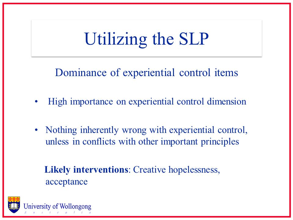 Utilizing the SLP Dominance of experiential control items High importance on experiential control dimension Nothing inherently wrong with experiential