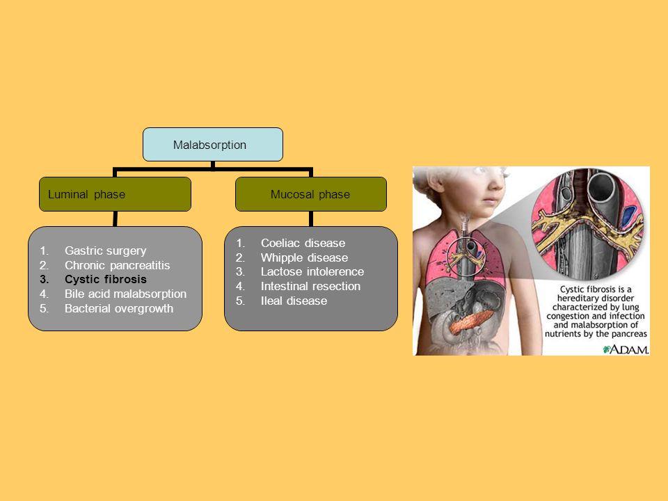 Malabsorption Luminal phase 1.Gastric surgery 2.Chronic pancreatitis 3.Cystic fibrosis 4.Bile acid malabsorption 5.Bacterial overgrowth Mucosal phase