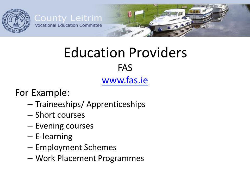 Education Providers FAS www.fas.ie For Example: – Traineeships/ Apprenticeships – Short courses – Evening courses – E-learning – Employment Schemes – Work Placement Programmes