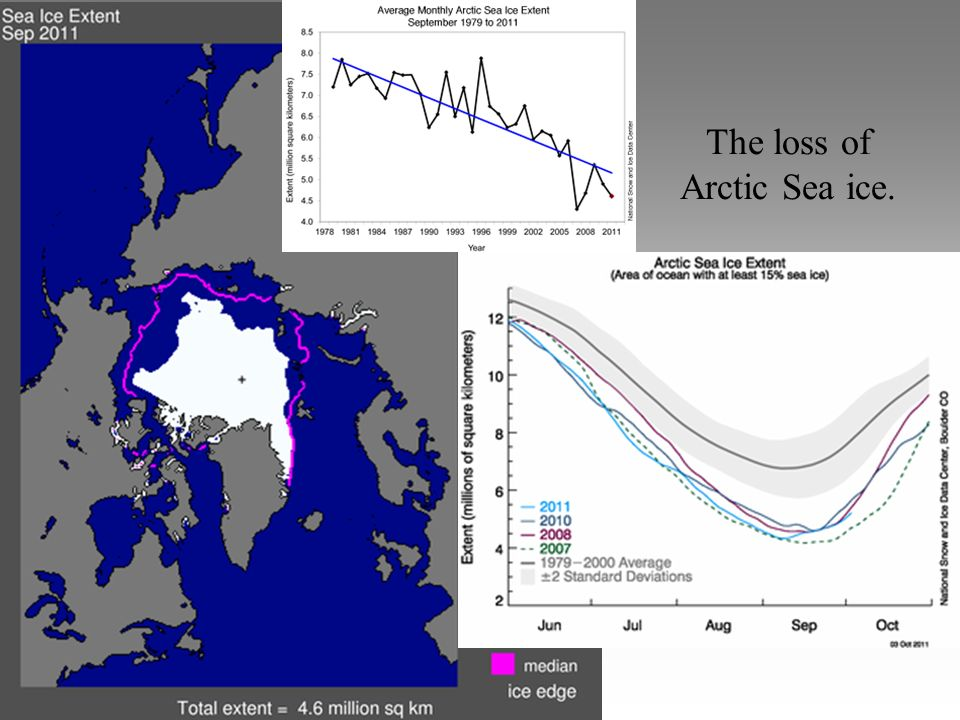 The loss of Arctic Sea ice.