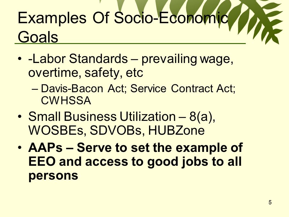 5 Examples Of Socio-Economic Goals -Labor Standards – prevailing wage, overtime, safety, etc –Davis-Bacon Act; Service Contract Act; CWHSSA Small Business Utilization – 8(a), WOSBEs, SDVOBs, HUBZone AAPs – Serve to set the example of EEO and access to good jobs to all persons