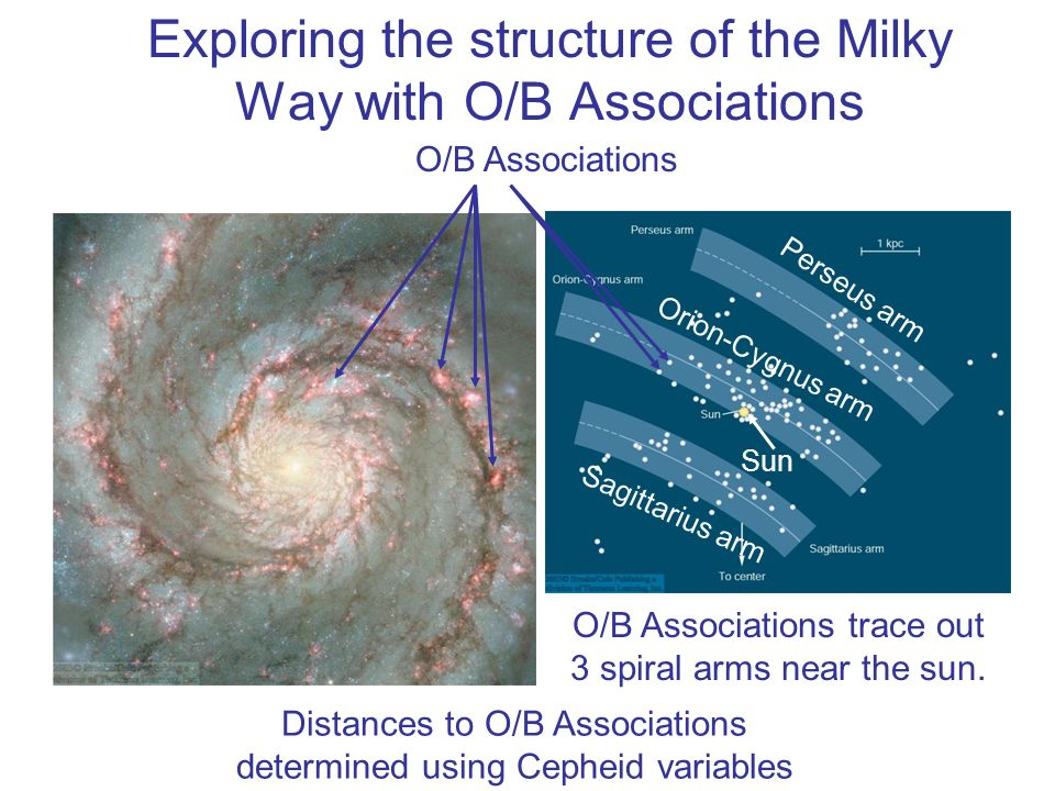 Exploring the structure of the Milky Way with O/B Associations O/B Associations Distances to O/B Associations determined using Cepheid variables O/B A