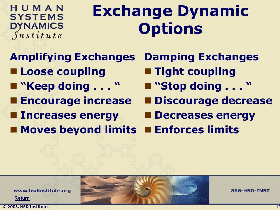 © 2008. HSD Institute.19 Exchange Dynamic Options Amplifying Exchanges Loose coupling Keep doing...