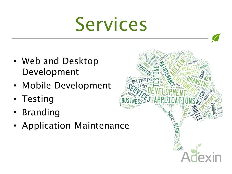 Services Web and Desktop Development Mobile Development Testing Branding Application Maintenance