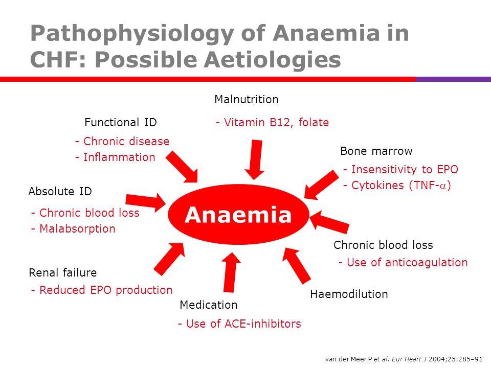 van der Meer P et al. Eur Heart J 2004;25:285–91 Anaemia Malnutrition Chronic blood loss Bone marrow - Insensitivity to EPO - Cytokines (TNF-) - Chron