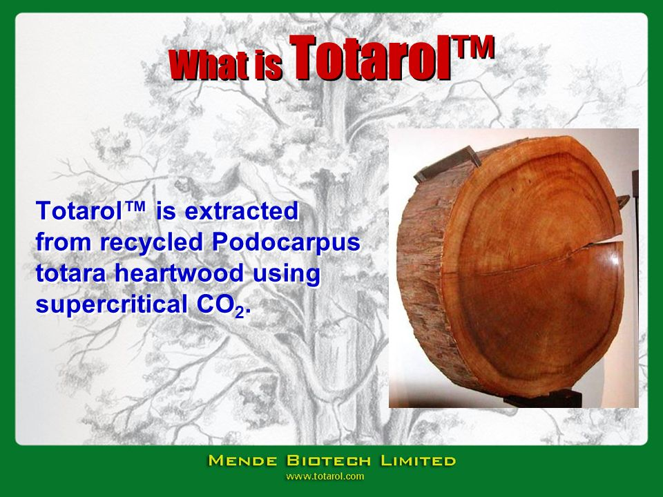 What is Totarol Totarol is extracted from recycled Podocarpus totara heartwood using supercritical CO 2.
