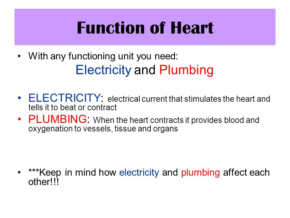Function of Heart With any functioning unit you need: Electricity and Plumbing ELECTRICITY: electrical current that stimulates the heart and tells it