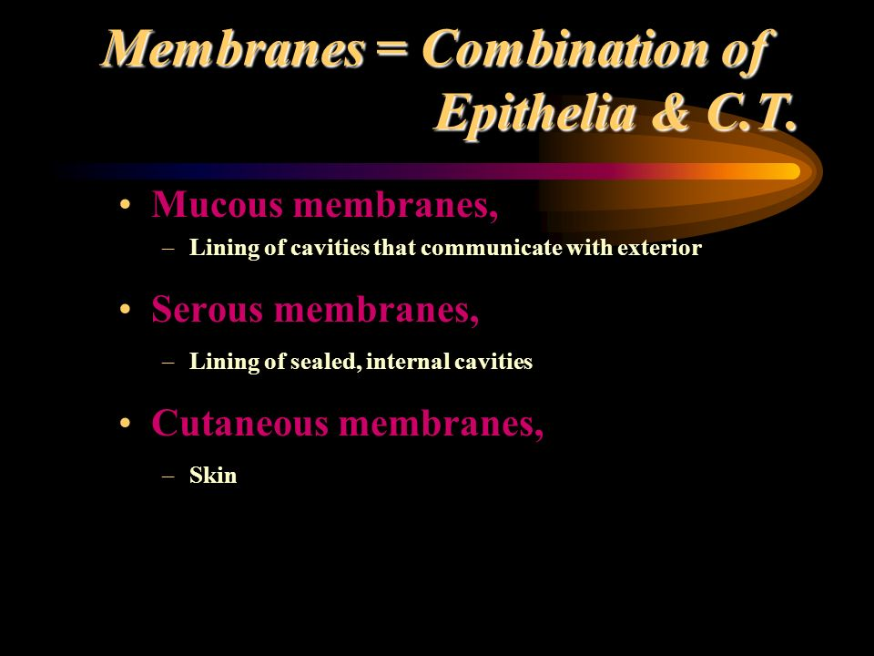 Membranes = Combination of Epithelia & C.T. Mucous membranes, –Lining of cavities that communicate with exterior Serous membranes, –Lining of sealed,