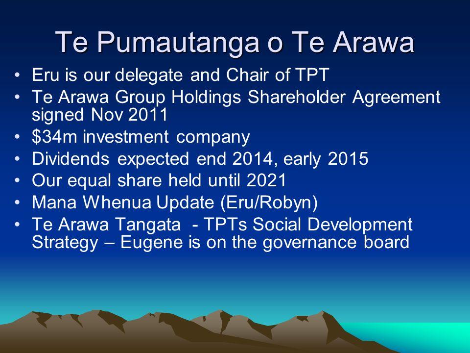 Te Pumautanga o Te Arawa Eru is our delegate and Chair of TPT Te Arawa Group Holdings Shareholder Agreement signed Nov 2011 $34m investment company Di
