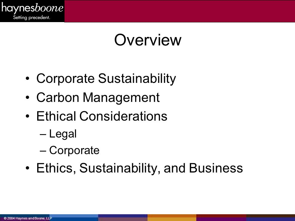 © 2004 Haynes and Boone, LLP What does sustainability mean.