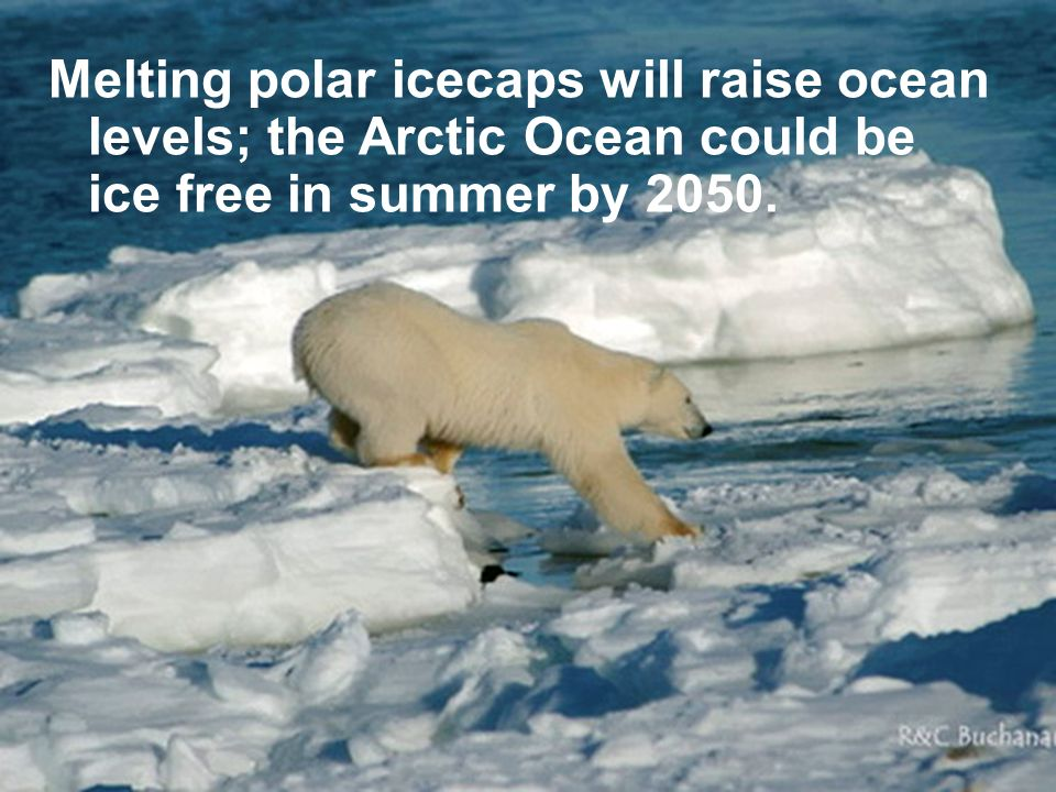 Melting polar icecaps will raise ocean levels; the Arctic Ocean could be ice free in summer by 2050.