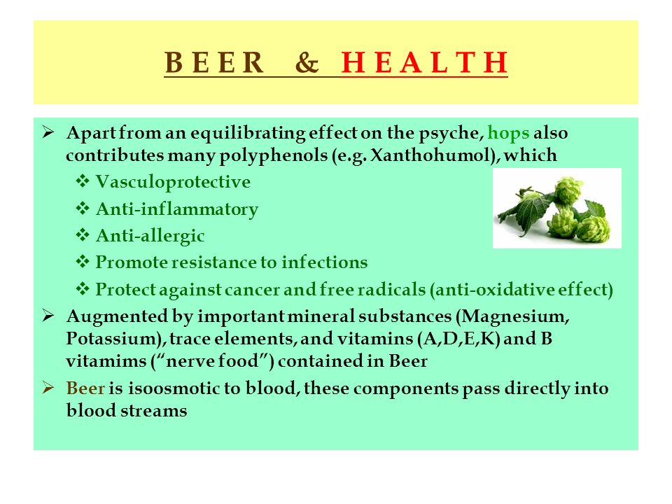 B E E R & H E A L T H Apart from an equilibrating effect on the psyche, hops also contributes many polyphenols (e.g. Xanthohumol), which Vasculoprotec