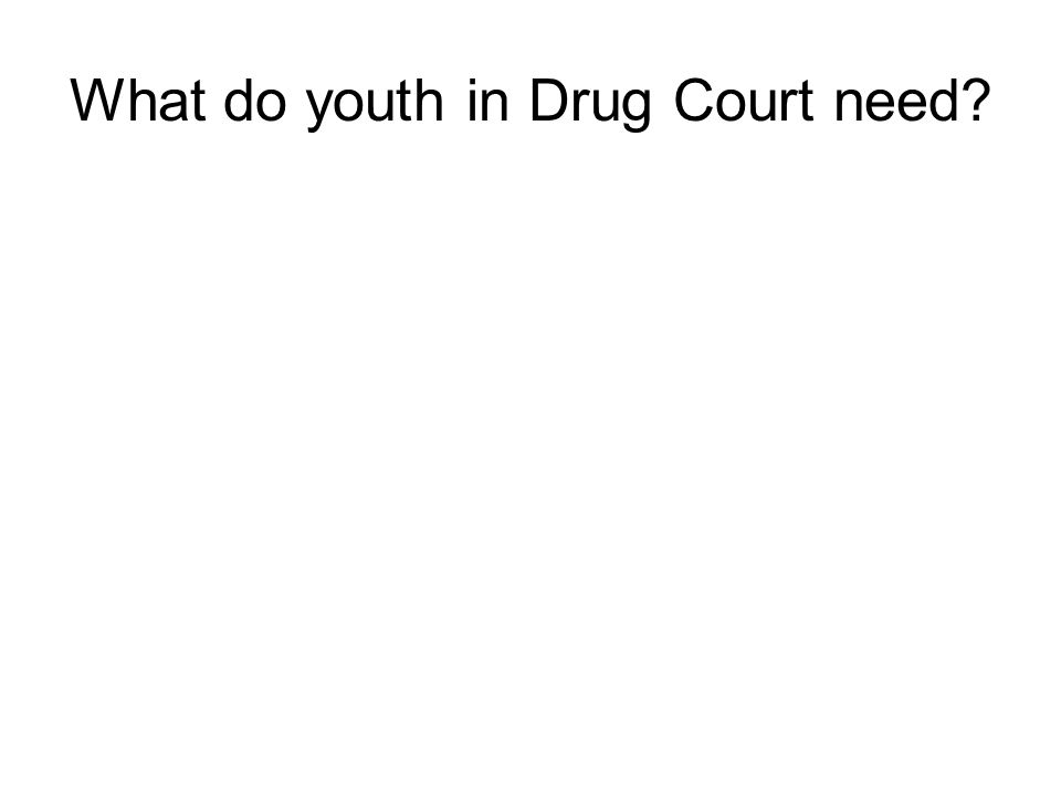 What do youth in Drug Court need?