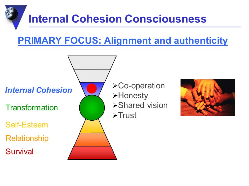 Internal Cohesion Consciousness Internal Cohesion Survival Relationship Self-Esteem Transformation PRIMARY FOCUS: Alignment and authenticity Co-operation Honesty Shared vision Trust