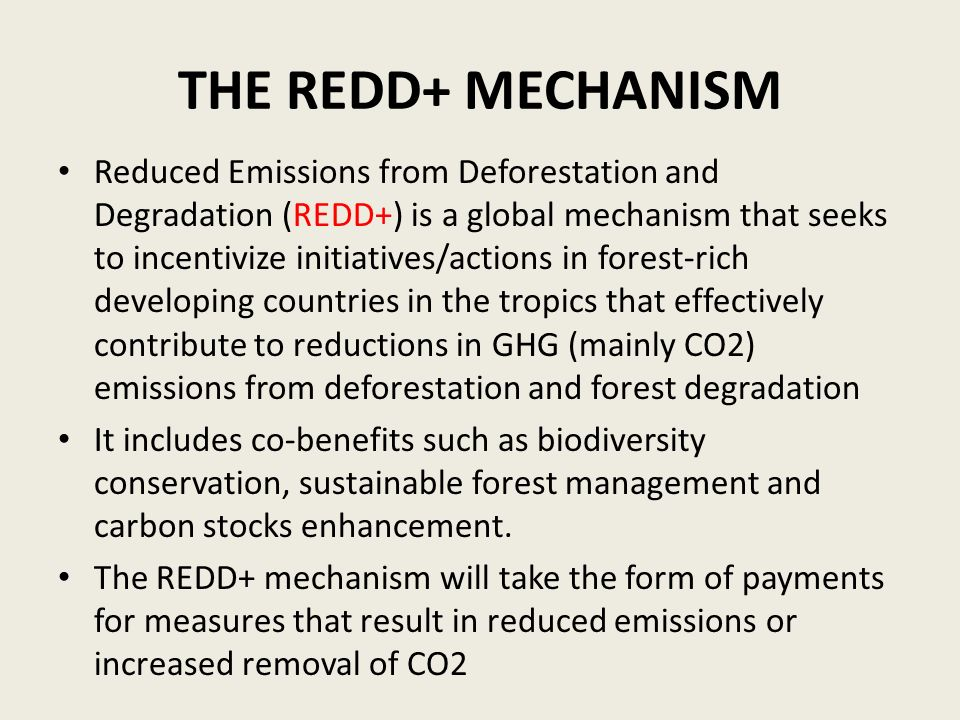 THE REDD+ MECHANISM Reduced Emissions from Deforestation and Degradation (REDD+) is a global mechanism that seeks to incentivize initiatives/actions i
