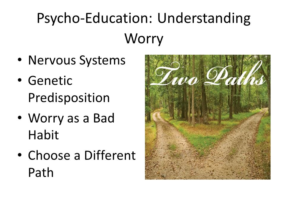 Psycho-Education: Understanding Worry Nervous Systems Genetic Predisposition Worry as a Bad Habit Choose a Different Path
