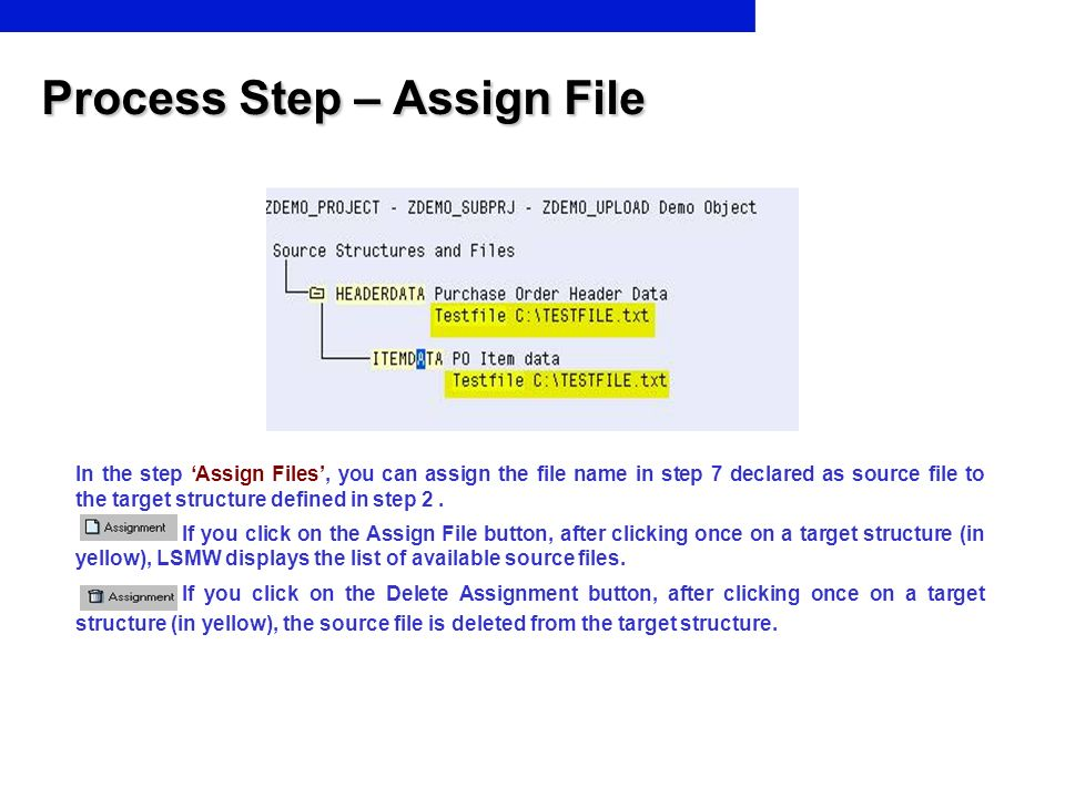 Process Step – Assign File In the step Assign Files, you can assign the file name in step 7 declared as source file to the target structure defined in