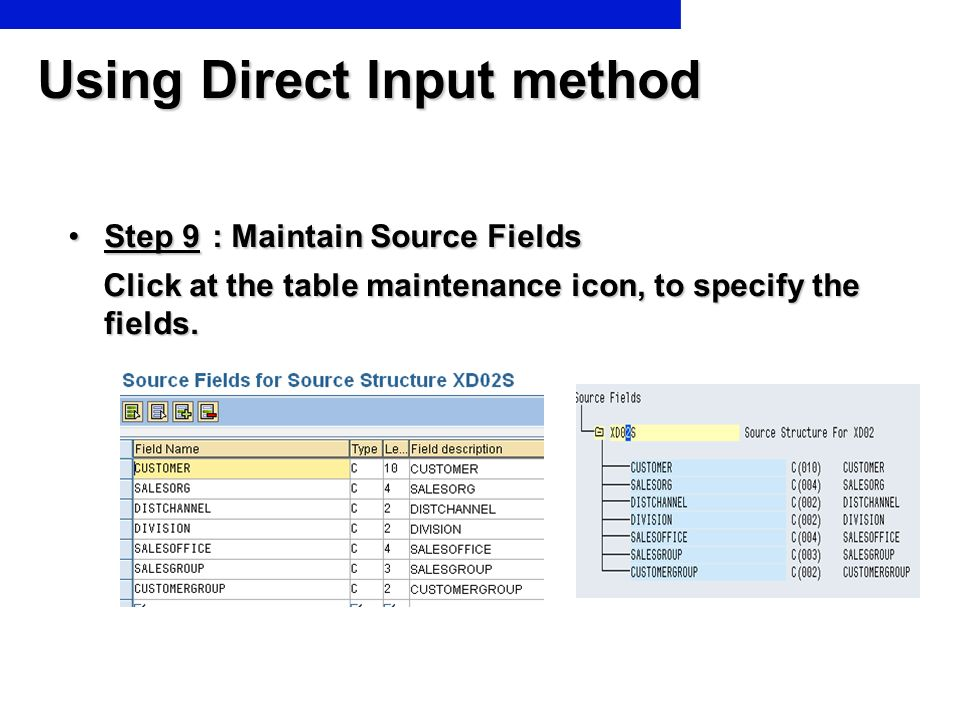 Using Direct Input method Step 9 : Maintain Source FieldsStep 9 : Maintain Source Fields Click at the table maintenance icon, to specify the fields. C