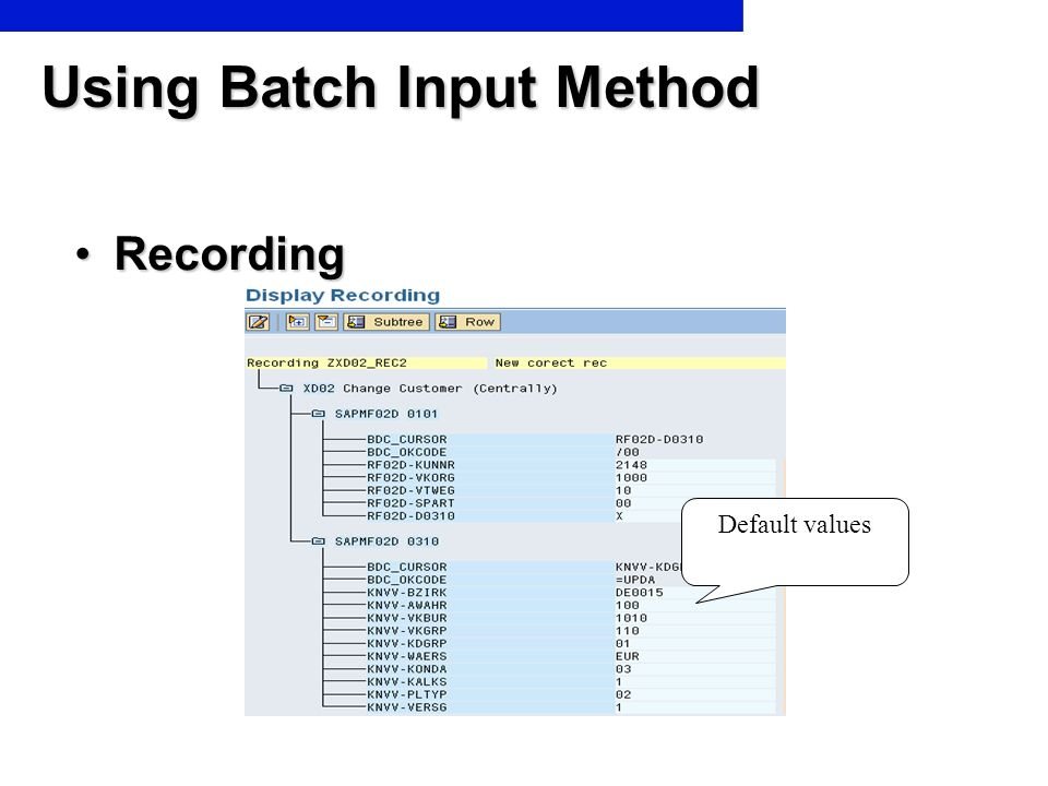 Using Batch Input Method RecordingRecording Default values