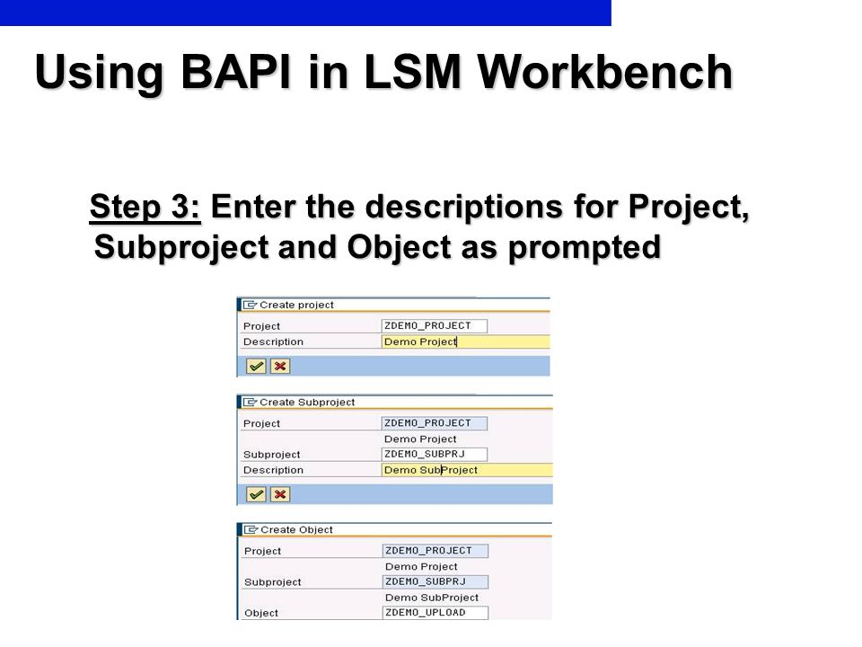 Using BAPI in LSM Workbench Step 3: Enter the descriptions for Project, Subproject and Object as prompted Step 3: Enter the descriptions for Project,