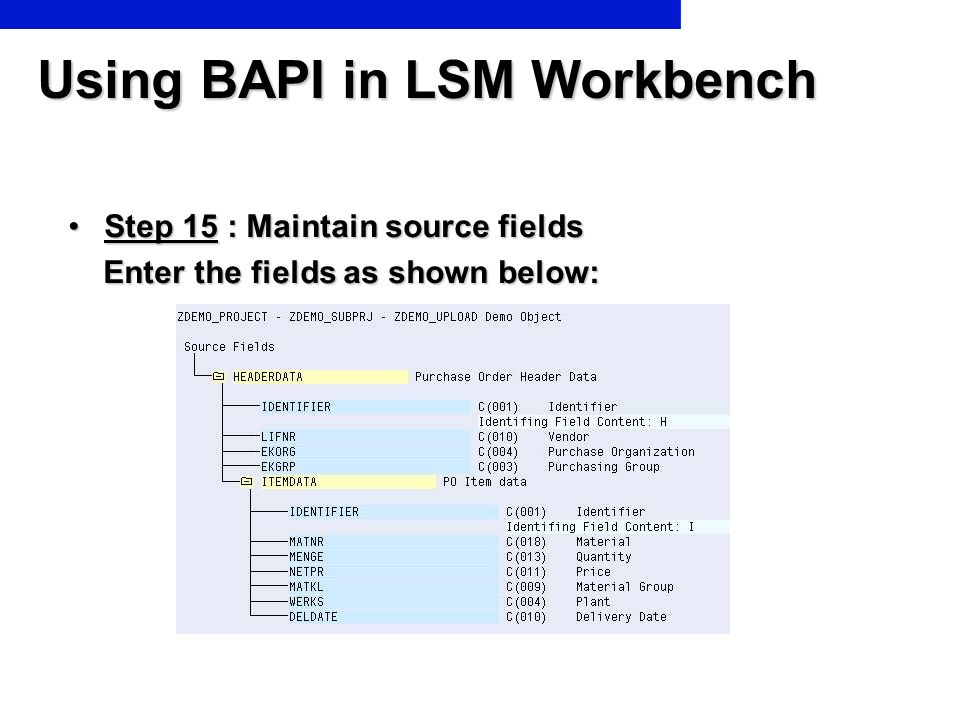 Using BAPI in LSM Workbench Step 15 : Maintain source fieldsStep 15 : Maintain source fields Enter the fields as shown below: Enter the fields as show
