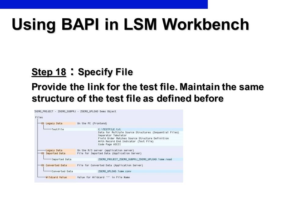 Using BAPI in LSM Workbench Step 18 : Specify File Step 18 : Specify File Provide the link for the test file. Maintain the same structure of the test