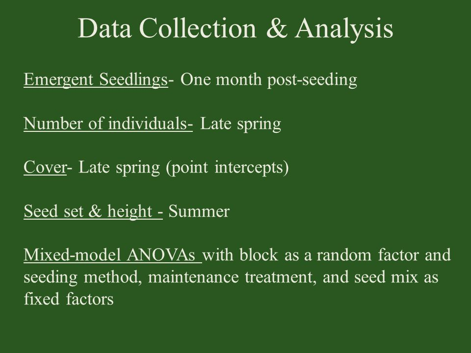 Data Collection & Analysis Emergent Seedlings- One month post-seeding Number of individuals- Late spring Cover- Late spring (point intercepts) Seed se