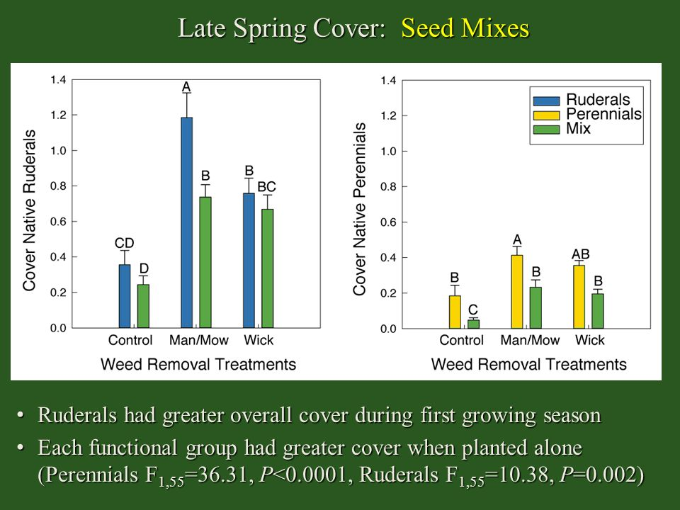 Late Spring Cover: Seed Mixes Ruderals had greater overall cover during first growing season Ruderals had greater overall cover during first growing s