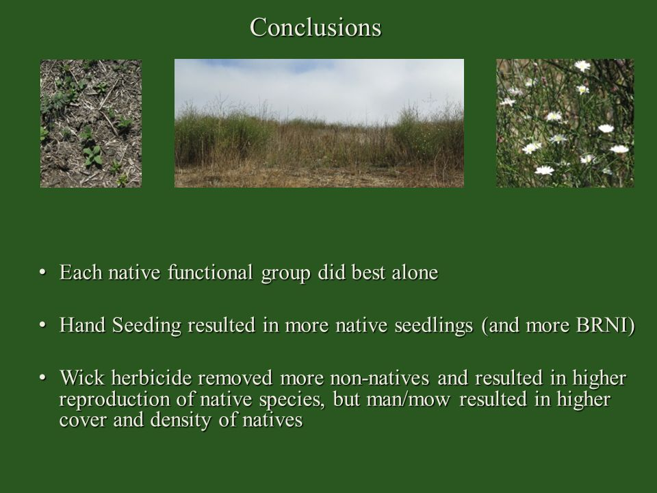 Conclusions Each native functional group did best alone Each native functional group did best alone Hand Seeding resulted in more native seedlings (an