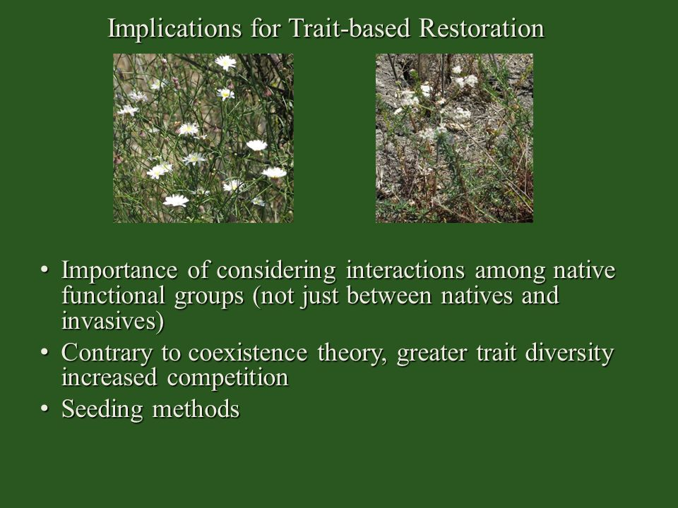 Implications for Trait-based Restoration Importance of considering interactions among native functional groups (not just between natives and invasives