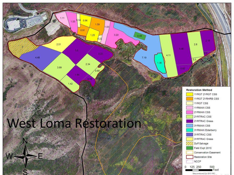 West Loma Restoration