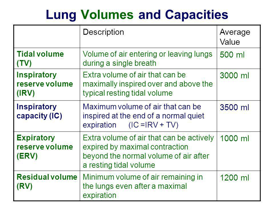 Lung Volumes and Capacities DescriptionAverage Value Tidal volume (TV) Volume of air entering or leaving lungs during a single breath 500 ml Inspirato