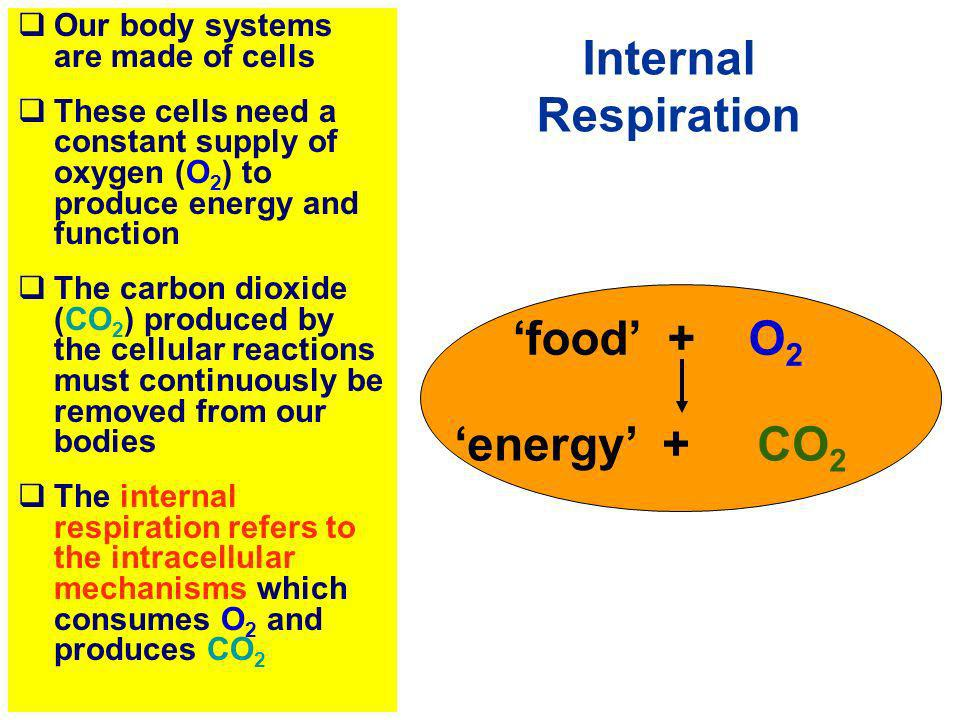 Our body systems are made of cells These cells need a constant supply of oxygen (O 2 ) to produce energy and function The carbon dioxide (CO 2 ) produ
