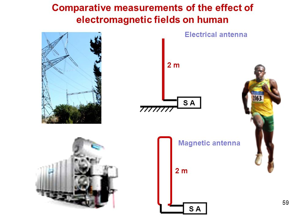 59 S A 2 m S A 2 m Electrical antenna Magnetic antenna Comparative measurements of the effect of electromagnetic fields on human