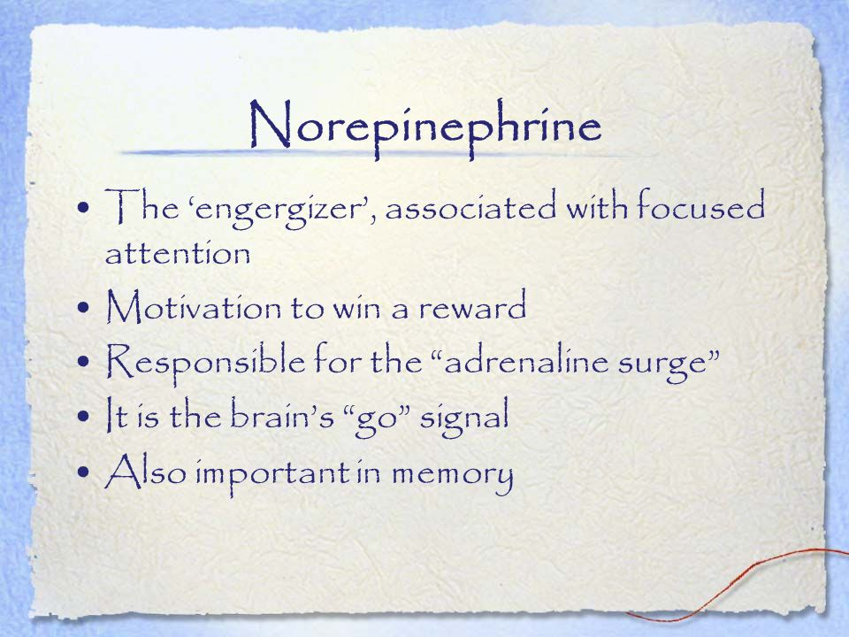 Norepinephrine The engergizer, associated with focused attention Motivation to win a reward Responsible for the adrenaline surge It is the brains go s