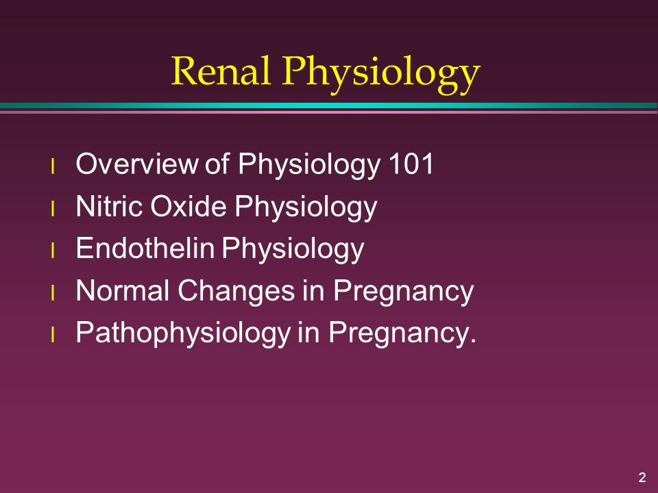 2 Renal Physiology l Overview of Physiology 101 l Nitric Oxide Physiology l Endothelin Physiology l Normal Changes in Pregnancy l Pathophysiology in P