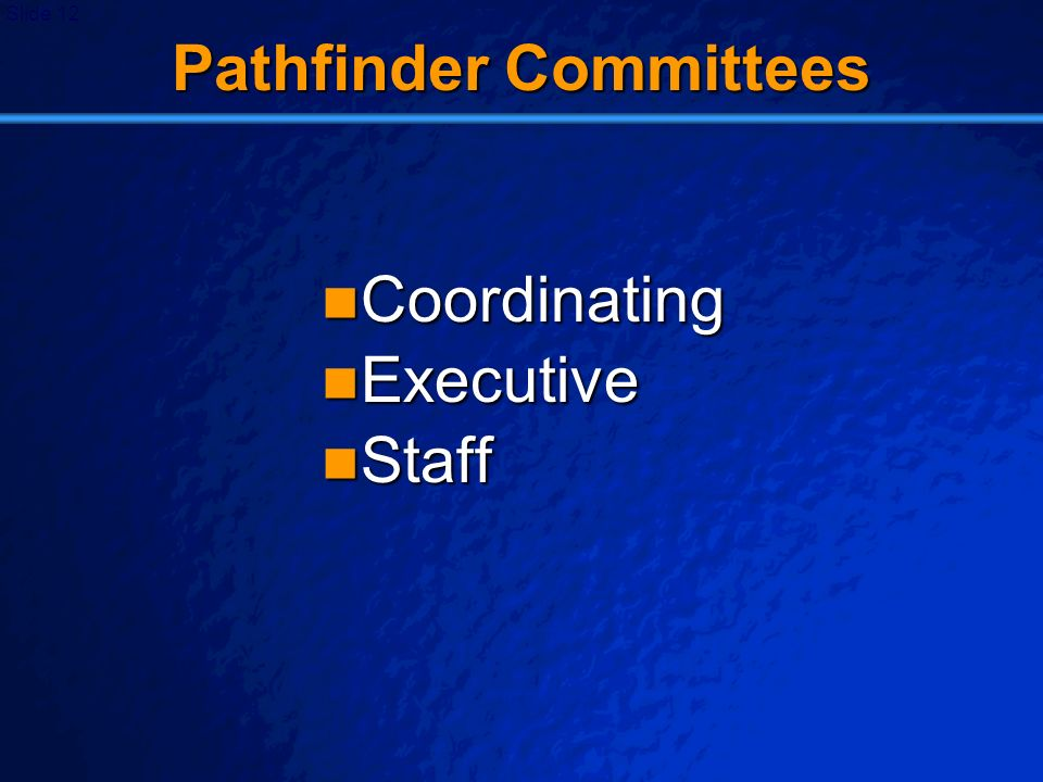 © 2003 By Default! A Free sample background from www.powerpointbackgrounds.com Slide 12 Pathfinder Committees Coordinating Coordinating Executive Exec