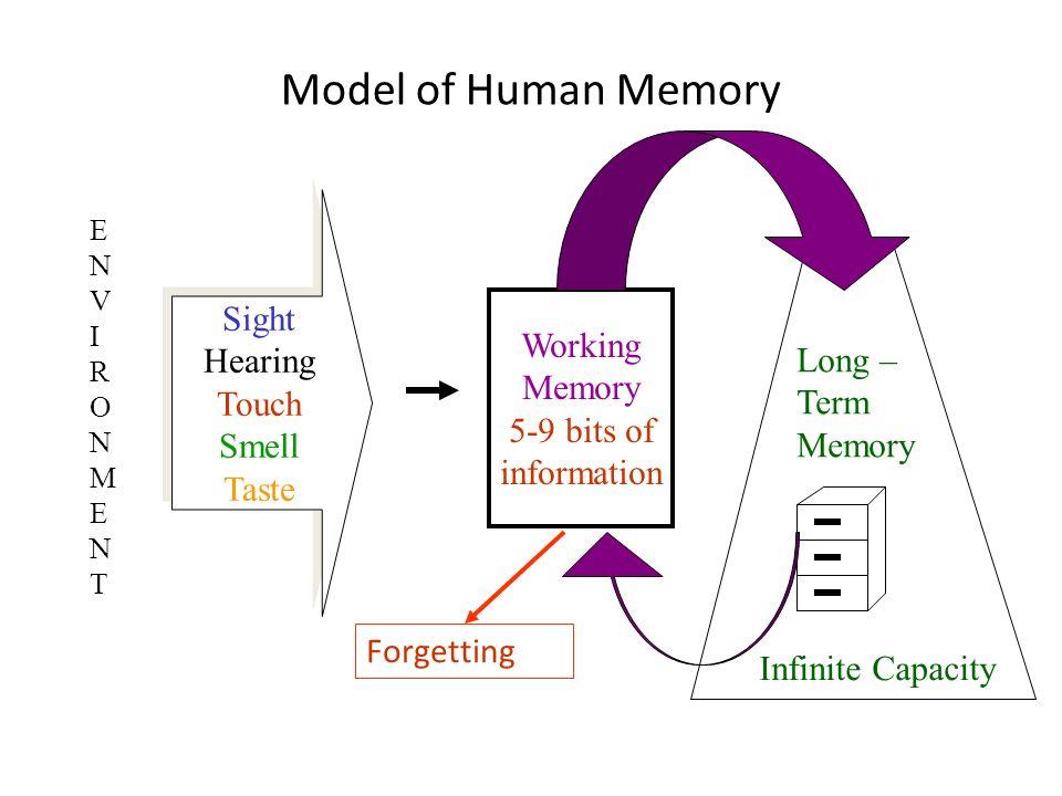 Model of Human Memory Sight Hearing Touch Smell Taste Sight Hearing Touch Smell Taste Working Memory 5-9 bits of information Long – Term Memory ENVIRO