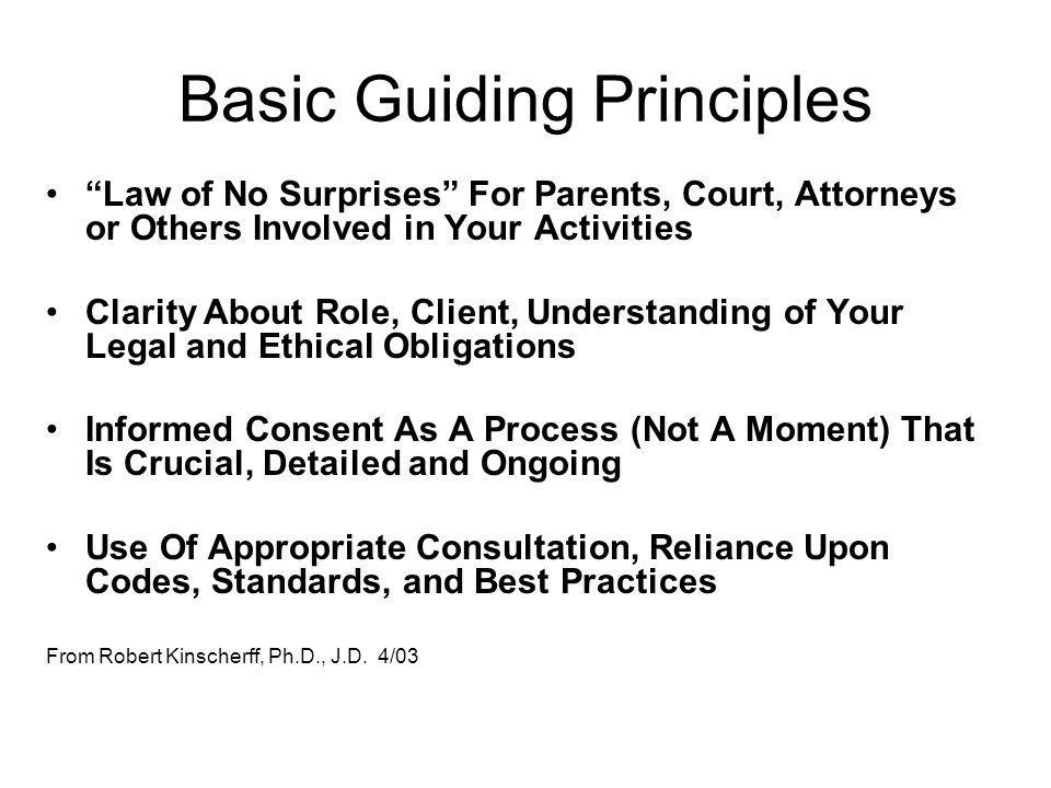 Basic Guiding Principles Law of No Surprises For Parents, Court, Attorneys or Others Involved in Your Activities Clarity About Role, Client, Understan
