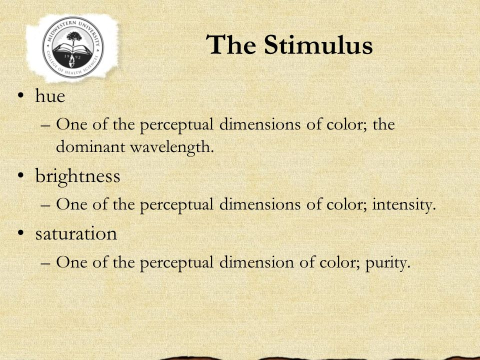 The Stimulus hue –One of the perceptual dimensions of color; the dominant wavelength. brightness –One of the perceptual dimensions of color; intensity