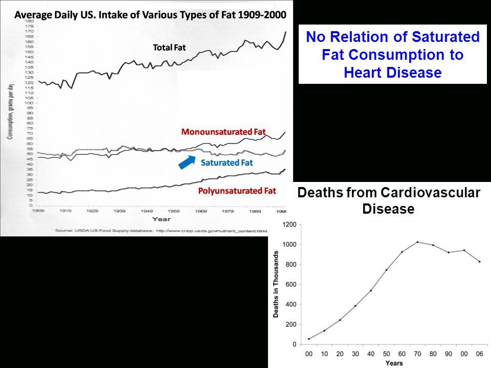 Deaths from Cardiovascular Disease No Relation of Butter Consumption to Heart Disease