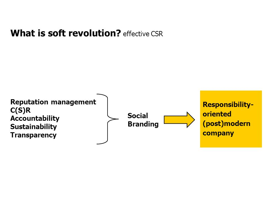 What is soft revolution.