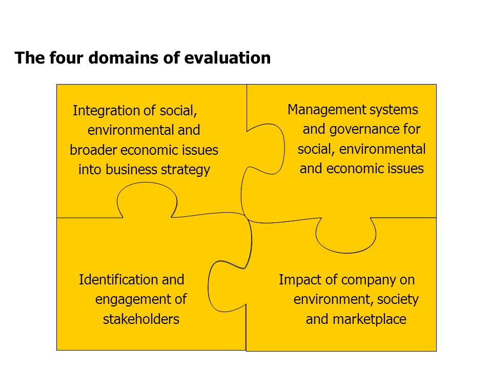 The four domains of evaluation Integration of social, environmental and broader economic issues into business strategy Identification and engagement of stakeholders Impact of company on environment, society and marketplace Management systems and governance for social, environmental and economic issues