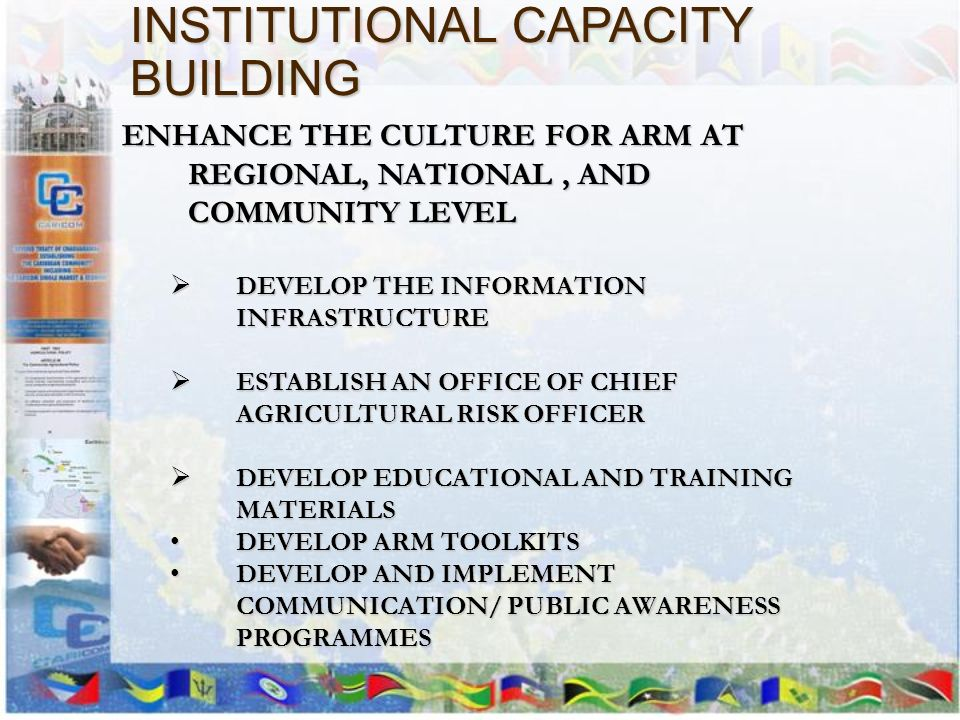 INSTITUTIONAL CAPACITY BUILDING ENHANCE THE CULTURE FOR ARM AT REGIONAL, NATIONAL, AND COMMUNITY LEVEL DEVELOP THE INFORMATION INFRASTRUCTURE DEVELOP