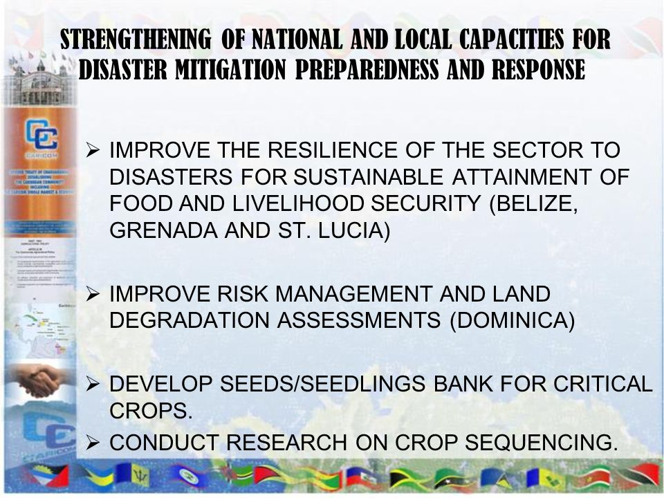 STRENGTHENING OF NATIONAL AND LOCAL CAPACITIES FOR DISASTER MITIGATION PREPAREDNESS AND RESPONSE IMPROVE THE RESILIENCE OF THE SECTOR TO DISASTERS FOR