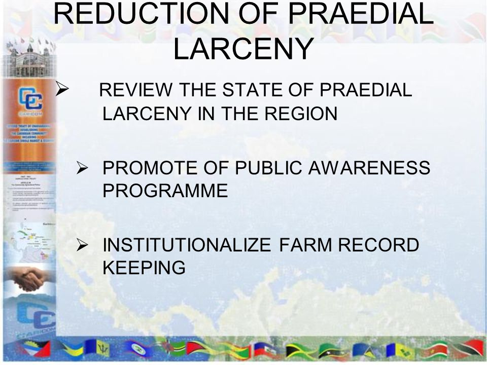 REDUCTION OF PRAEDIAL LARCENY REVIEW THE STATE OF PRAEDIAL LARCENY IN THE REGION PROMOTE OF PUBLIC AWARENESS PROGRAMME INSTITUTIONALIZE FARM RECORD KE