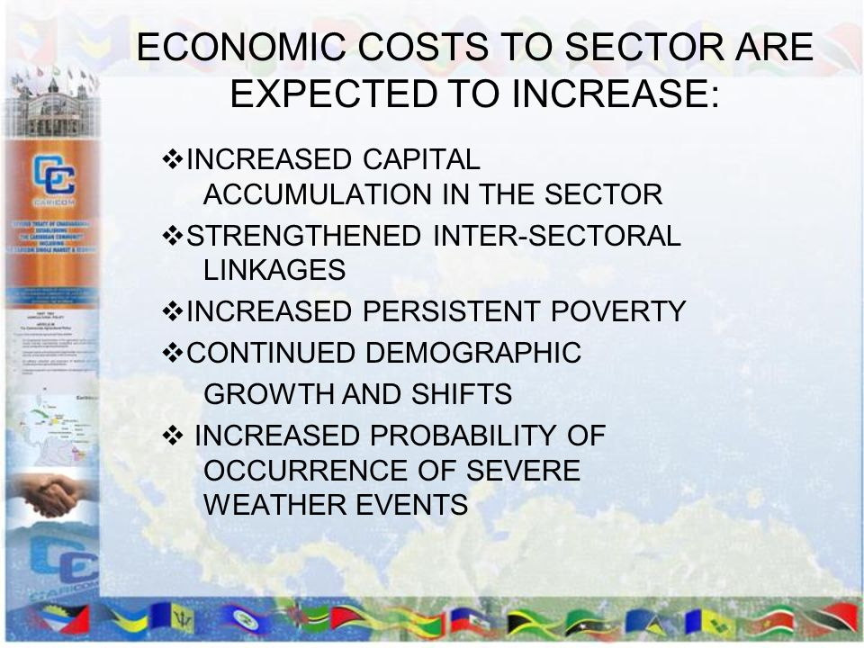 ECONOMIC COSTS TO SECTOR ARE EXPECTED TO INCREASE: INCREASED CAPITAL ACCUMULATION IN THE SECTOR STRENGTHENED INTER-SECTORAL LINKAGES INCREASED PERSIST