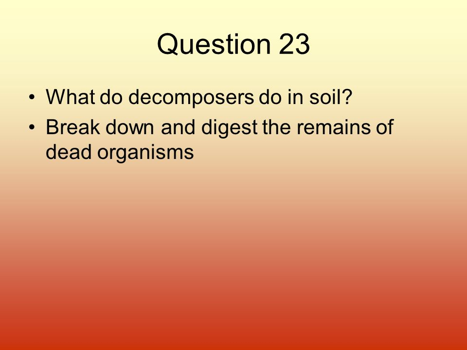 Question 23 What do decomposers do in soil? Break down and digest the remains of dead organisms