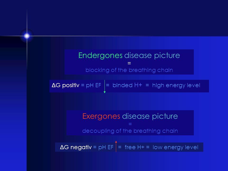 Endergones disease picture = blocking of the breathing chain Exergones disease picture = decoupling of the breathing chain Δ G positiv = pH EF = binde