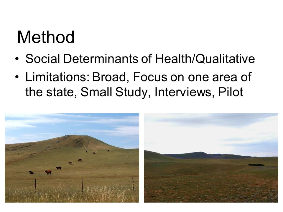 Method Social Determinants of Health/Qualitative Limitations: Broad, Focus on one area of the state, Small Study, Interviews, Pilot